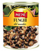 Funghi del muschio - Straw Mushrooms
