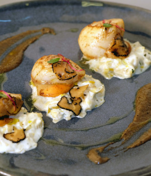 Scallops on leek cream sauce and truffle