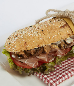 Multigrain panino with Èboscomix and Pizzicosa