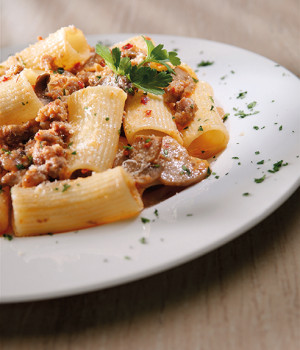 Rigatoni with sausage, mushrooms in a spicy sauce