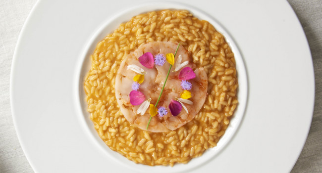 Risotto with shellfish bisque and prawns carpaccio