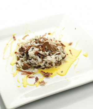Risotto del bosque
